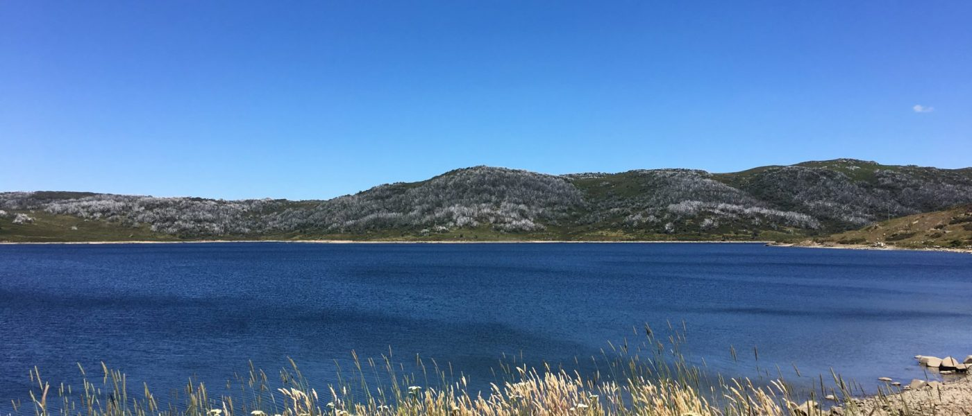 Falls Creek in Summer - Astra - IMG_3645